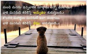 ... telugu quotes funny love quotes telugu funny quotes love telugu