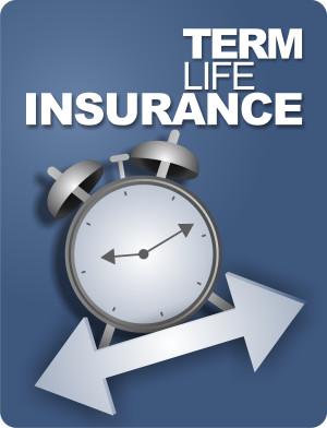 Term Life Insurance…