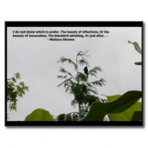Wallace Stevens Quote Postcard