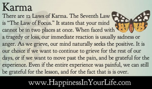 there are 12 laws of karma the seventh law is the law of focus it ...