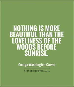 ... beautiful-than-the-loveliness-of-the-woods-before-sunrise-quote-1.jpg