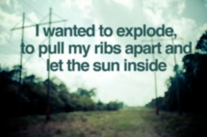 ... , inspiration, magic, outdoors, quote, quotes, ribs, sunshine, words