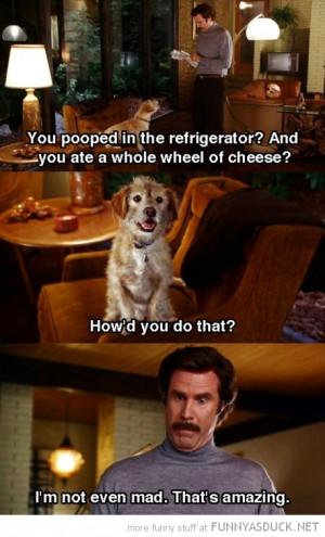 anchorman dog ron burgandy film movie scene baxter pooped refrigerator ...