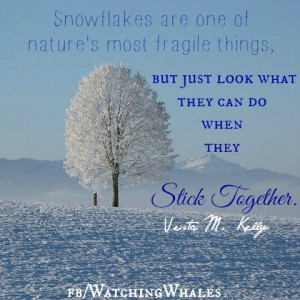 Quotes for Inspriation / snowflakes / stick together ;-)