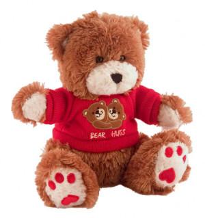Love You Teddy Bear Photo