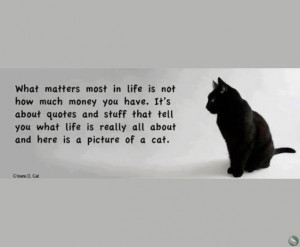 What matters most in life is quotes and stuff that tell you what life ...