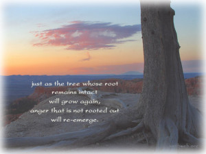 anger picture quotes, Just as the tree whose root remains intact will ...