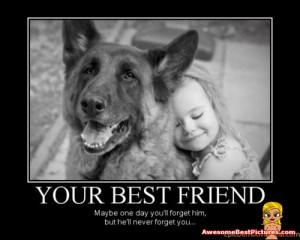 Labels: demotivational animal posters; very funny posters; very funny ...