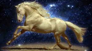 Horses Wallpaper 3D - HD Wallpapers