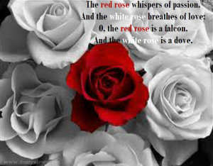 beautiful pictures of flowers with quotes