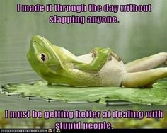 dealing with stupid people | ... anyone. I must be getting better at ...