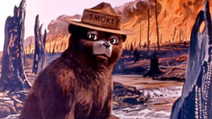 Smokey the Bear taken from a U.S. Agriculture Dept. poster. AP