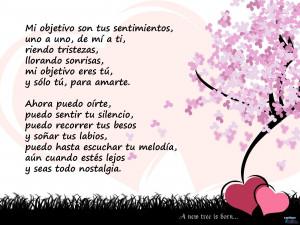 love poem in spanish valentines day