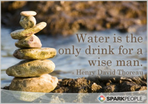 Motivational Quote - Water is the only drink for a wise man.