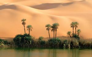 Desert Oasis Google Themes