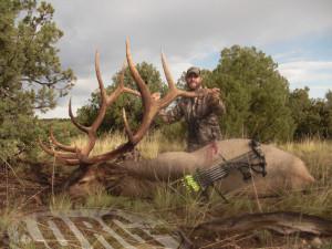 ORG Hunt Story Rifle Elk Hunt Late.jpg