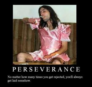 Perseverance Image
