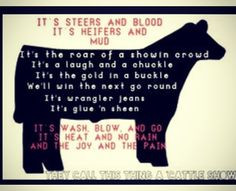 ... Steering Quotes, Cattle Quotes, Livestock Quotes, Show Cattle, Cows
