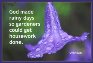 one of many inspirational spring gardening quotes about rainy days