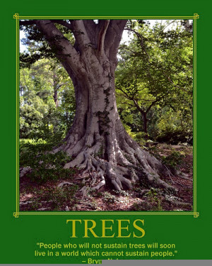 tree quote
