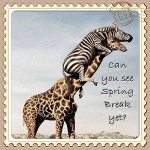 Spring Break Funny Quotes Spring break!