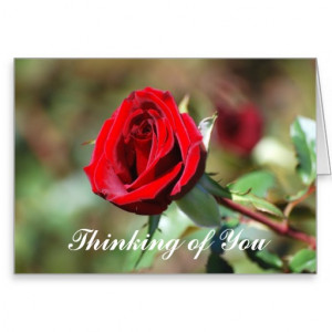 Thinking of You Romantic Red Rose Card