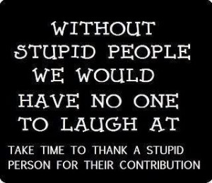 Without stupid people