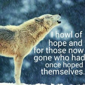 Wolf #howl #peace