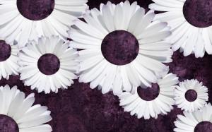 Purple Daisy Tumblr Backgrounds (3).jpg