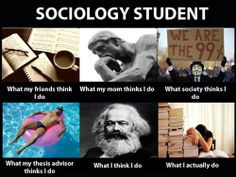 COMMENTS SOCIOLOGY MAJORS HATE TO RECEIVE Freshman year: Sociology ...