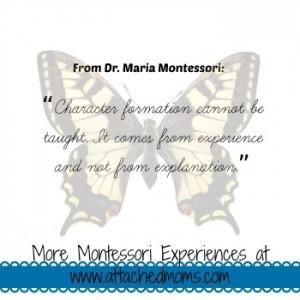 montessori6-300x300.jpg