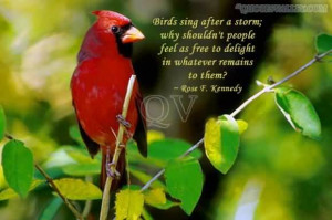 Birds Sing After A Storm - Adversity Quote