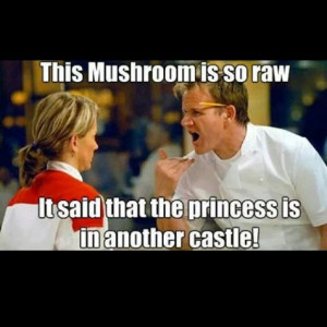 Gordon Ramsay humor = #funny: This Is Awesome, Giggl, Funny Stuff ...
