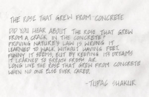 tupac poems rose that grew from concrete