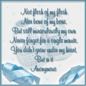 Miraculously My Own Adoption Journey Poems And Quotes Picture