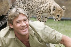 death animals steve irwin crocodile hunter Tribute irwin Australia zoo ...