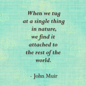 ... nature, we find it attached to the rest of the world.