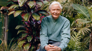 Photos of Merwin Poet Laureate