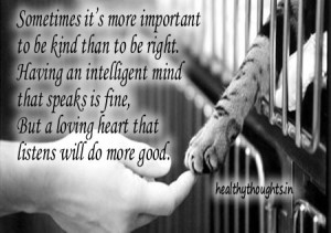 kindness quotes_being kind is more important than being intelligent