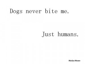 Bite Me Quotes Dogs never bite me. just