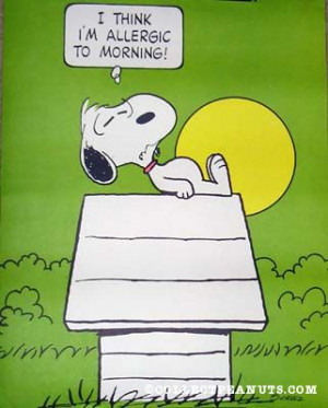 snoopy cartoon I think I m allergic to morning