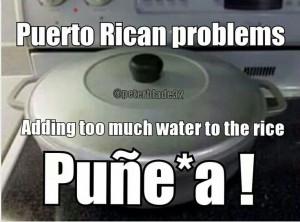 Puerto Rican Problem