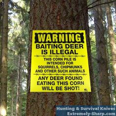 Deer Humor | Hunting knives | Baiting is Illegal, any deer eating this ...