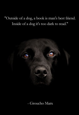 Outside of a dog, a book is man's best friend...