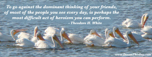To go against the dominant thinking of your friends,