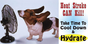 CLICK HERE to see our line of Heat Stroke safety banners and posters.