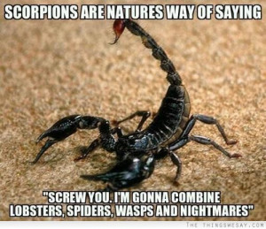 Scorpions are natures way of saying screw you I'm gonna combine ...