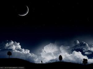 Summer Night Sky Wallpaper
