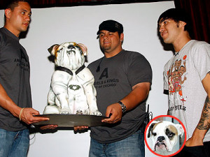 Pete Wentz eats his dog (kind of) plus more Tyra Banks, George Michael ...
