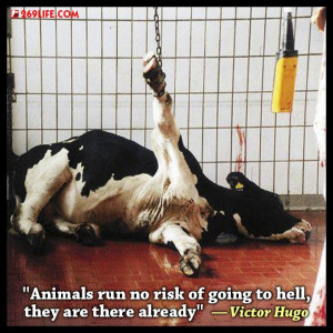 Animals run no risk of going to hell; they are there already.